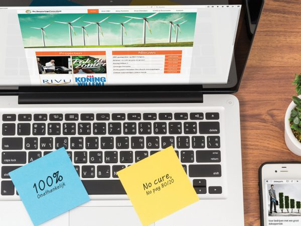 Websiteontwikkeling De BesparingsConsulent